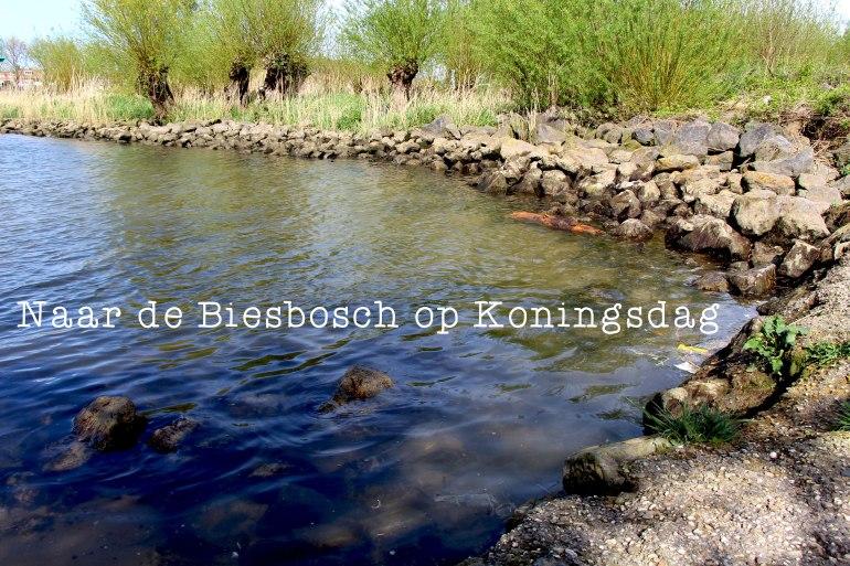 Biesbosch_Header